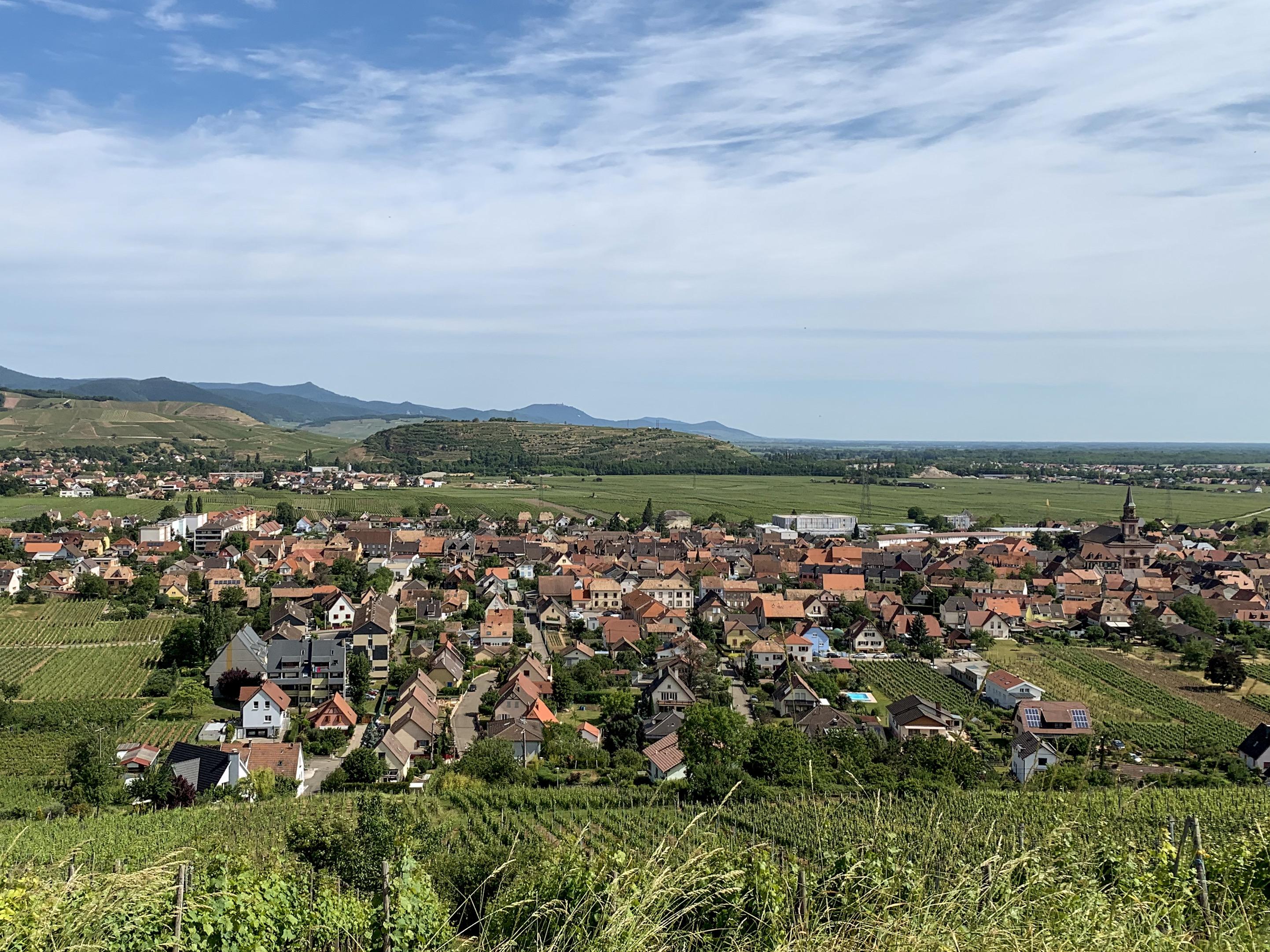 Pogled na Wintzenheim