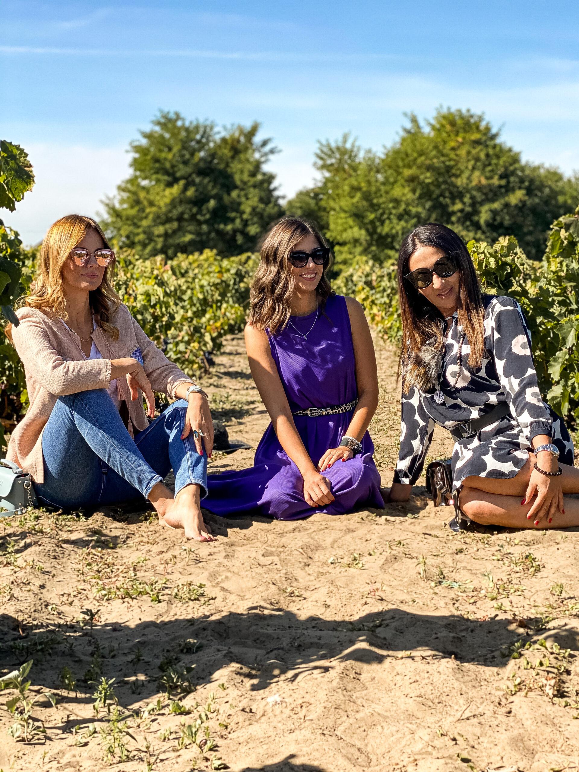 Vinograd na pesku