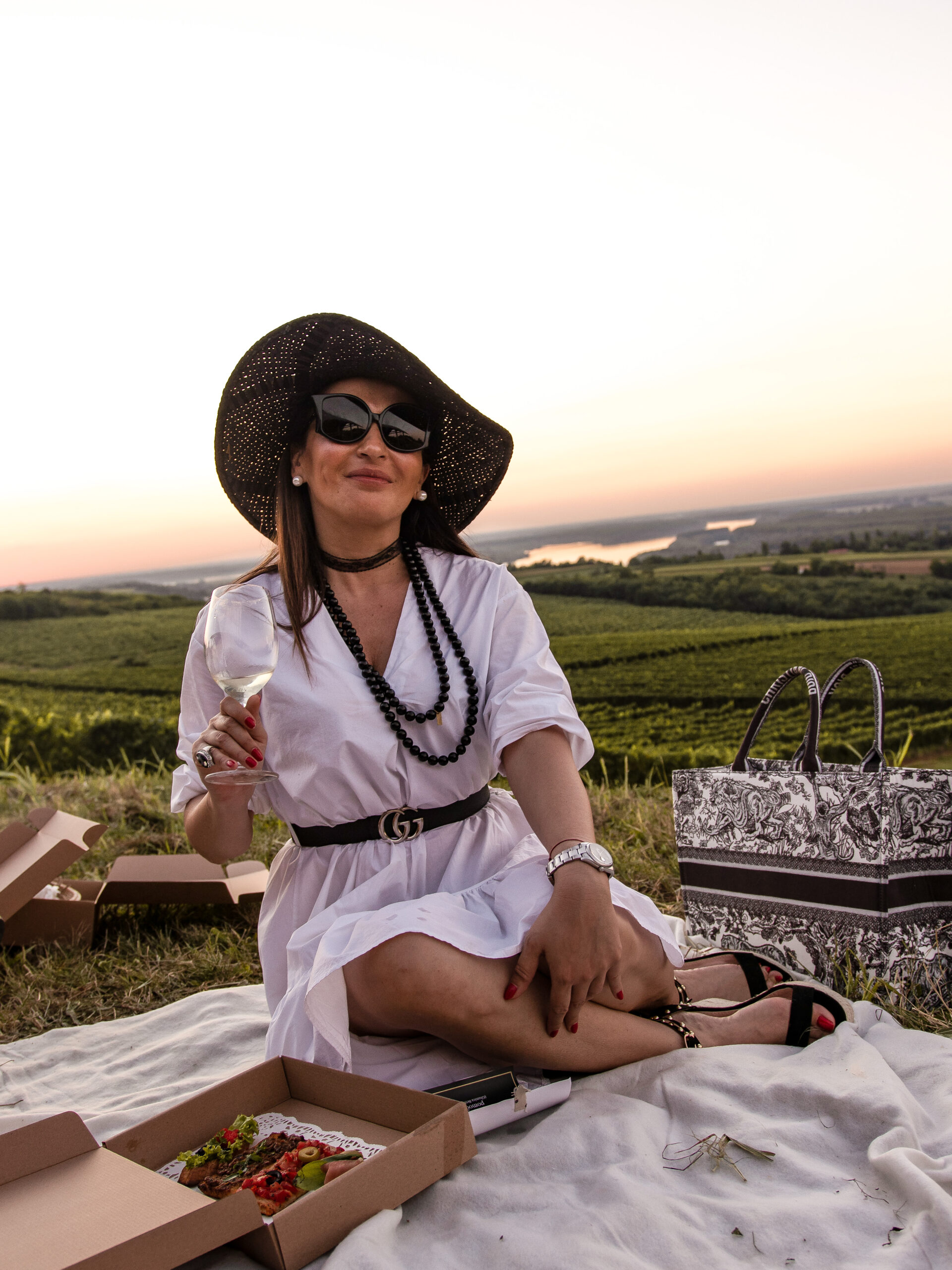 Dama na pikniku
